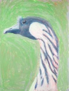 Canadian Goose oil pastels